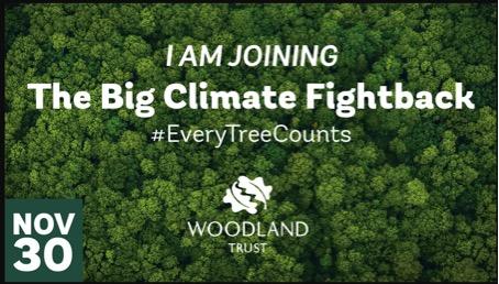 November Action – Plant a tree